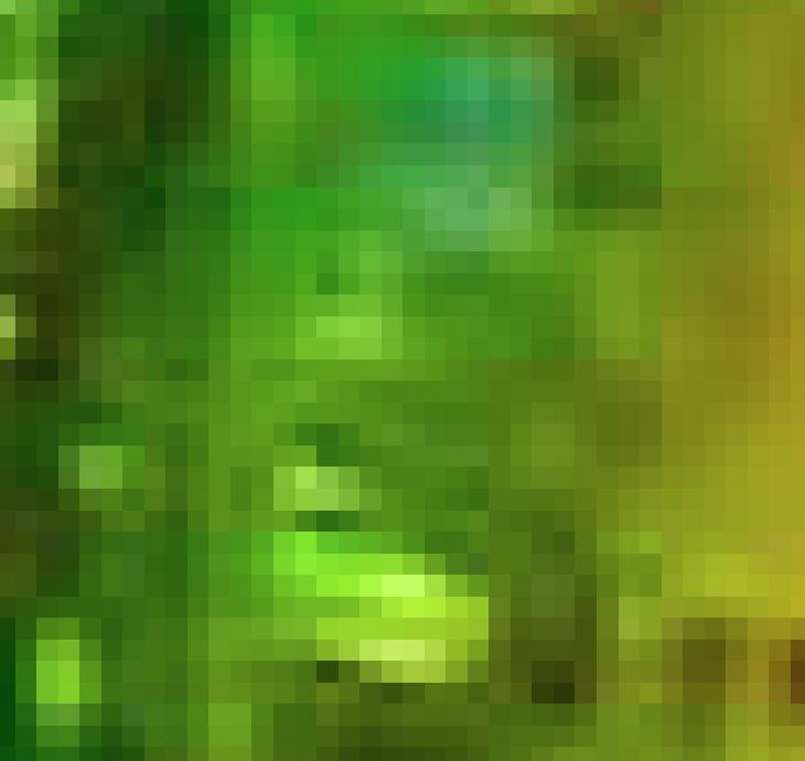 スクリーンショット 2015-10-11 13.59.14